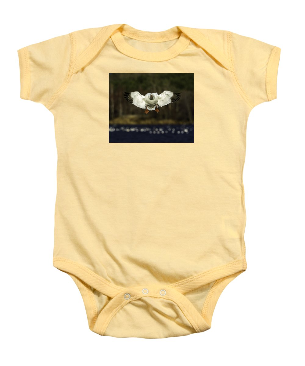 Oie Des Neiges Baby Onesie featuring the photograph Arrival by Marie Elise Mathieu