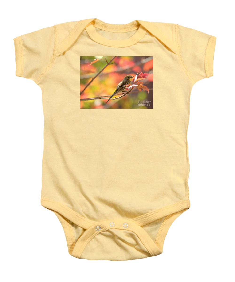Diana Graves Photography Baby Onesie featuring the photograph Autumn Yellow Rumped Warbler by K D Graves
