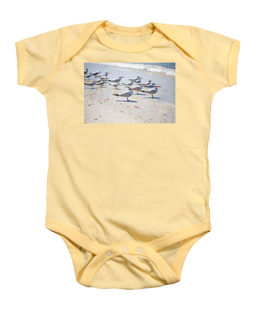 Terns Baby Onesie featuring the photograph Band Of Brothers by J Darrell Hutto