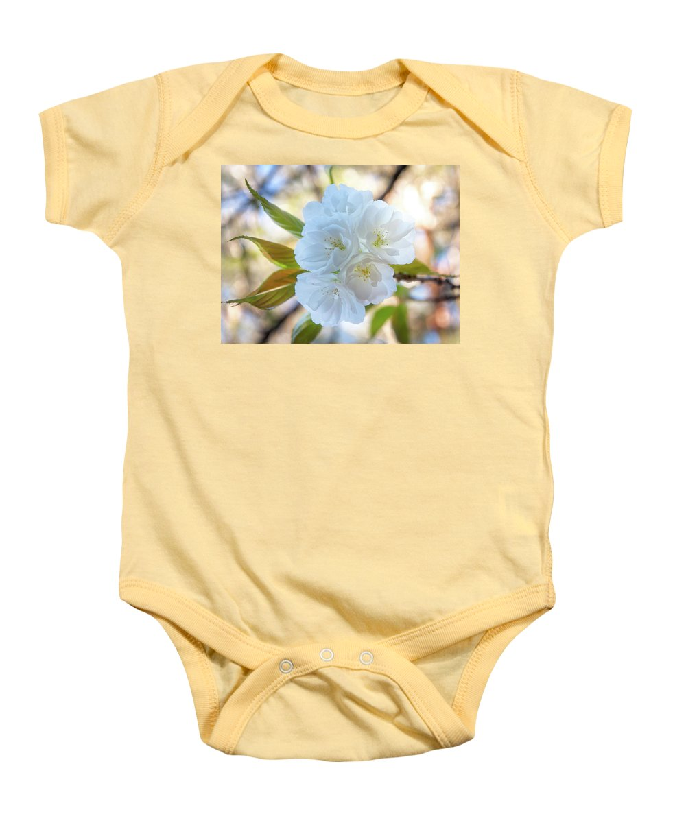 Australia Baby Onesie featuring the photograph Beauty Has No Name... by Daniela Constantinescu