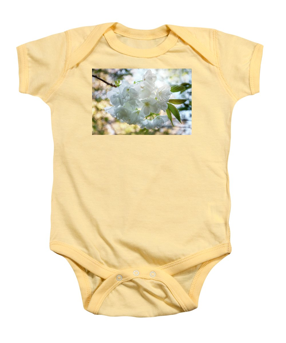 Australia Baby Onesie featuring the photograph Beauty Is Transcendent by Daniela Constantinescu
