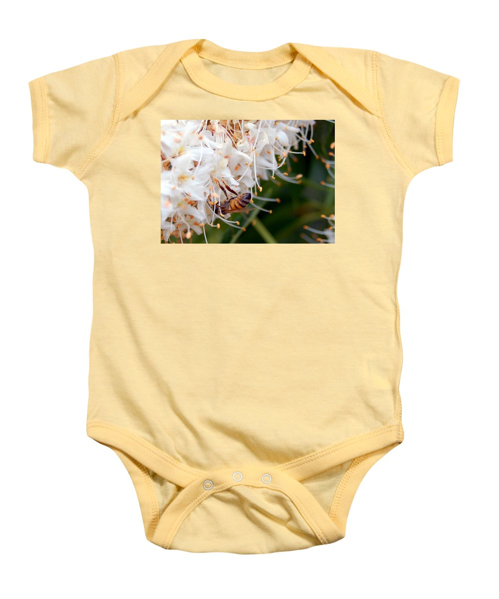 Flower Baby Onesie featuring the photograph Bee On Flowers 1 by Amy Fose