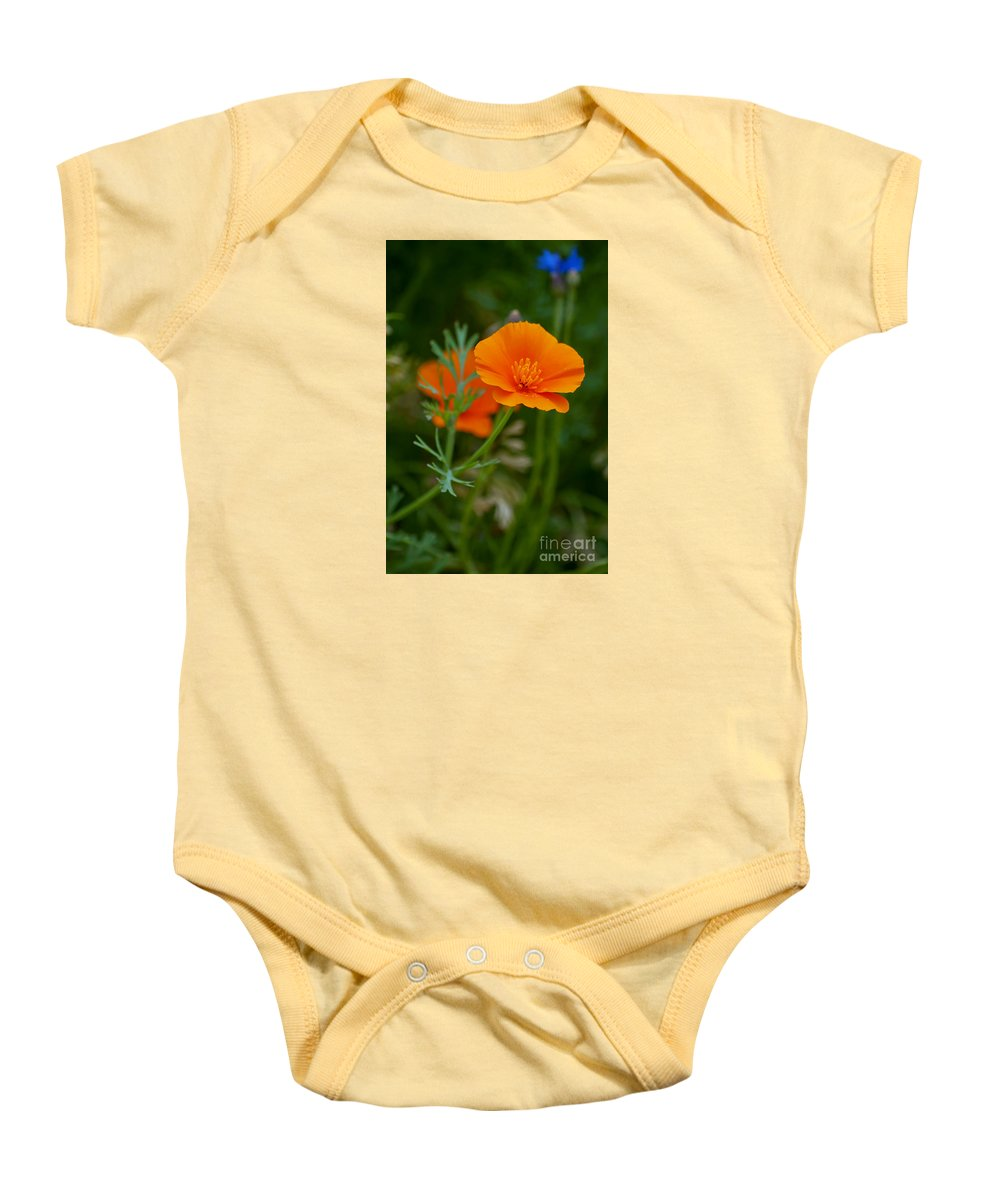 Diana Graves Photography Baby Onesie featuring the photograph California Poppy by K D Graves