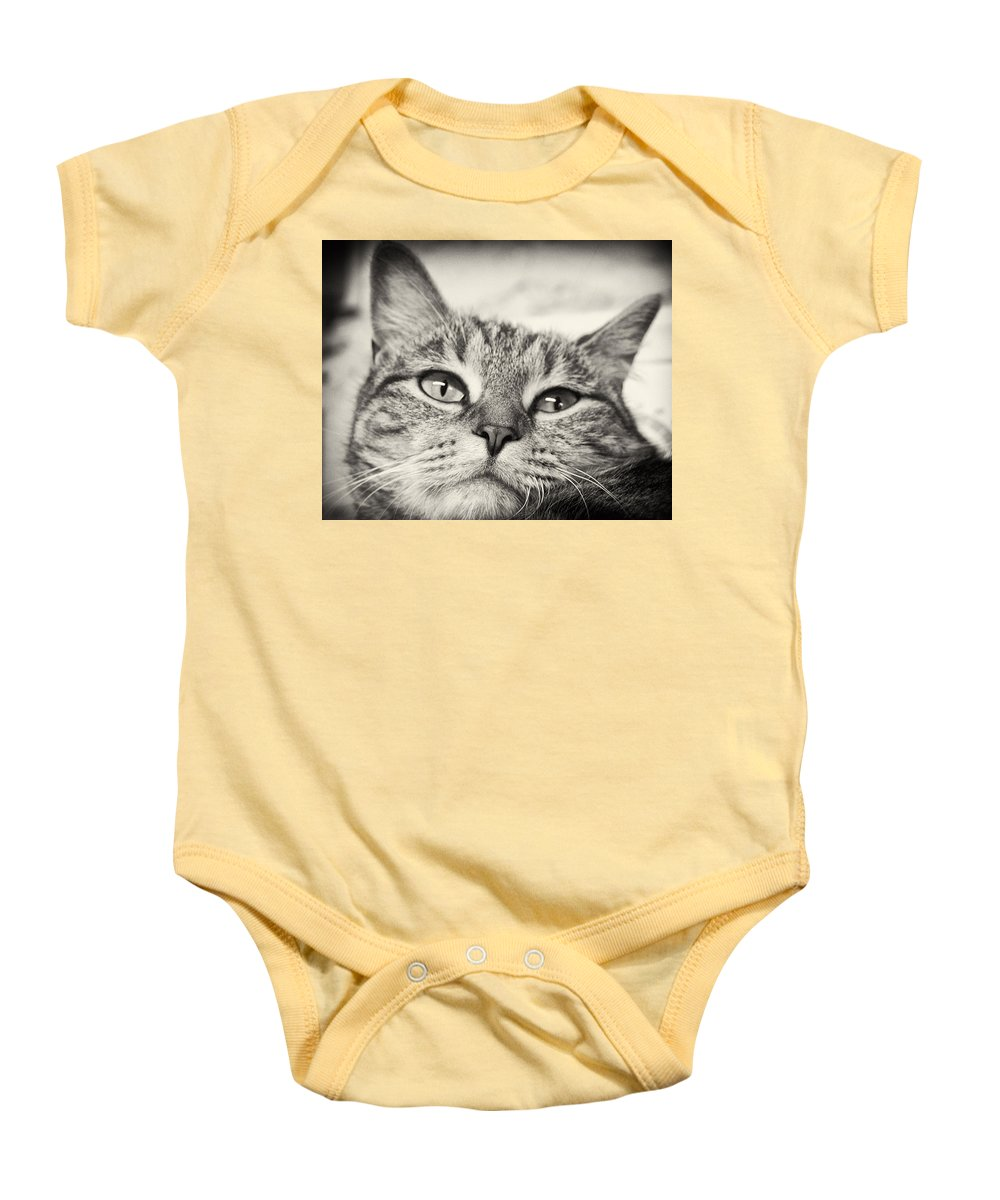 Cat Baby Onesie featuring the photograph Content by Scott Wyatt