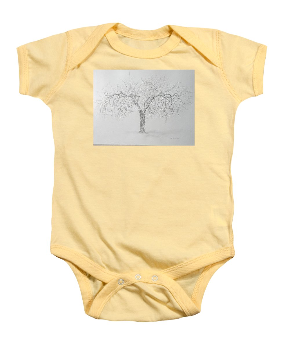 Cortland Apple Tree Baby Onesie featuring the drawing Cortland Apple by Leah Tomaino