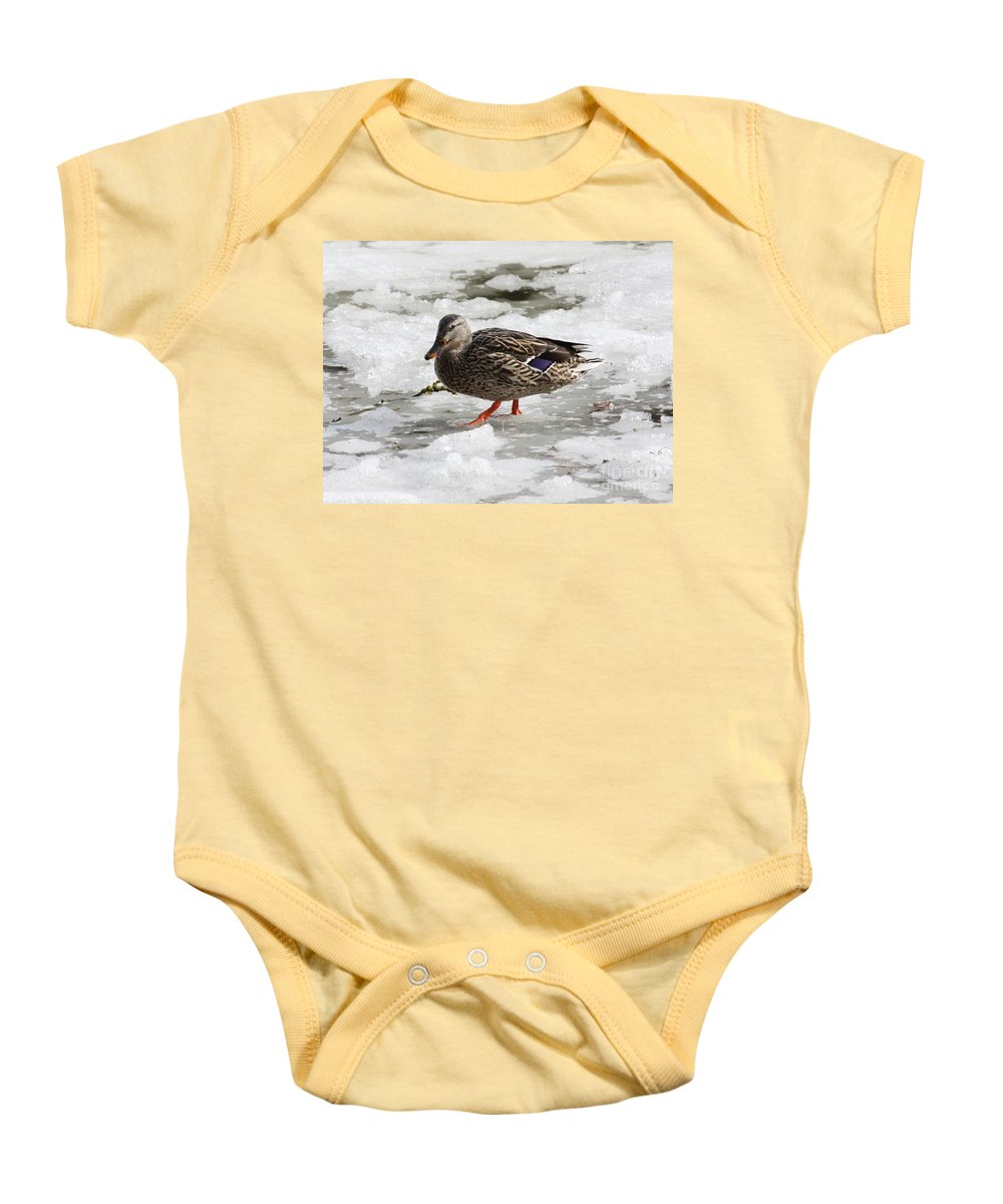 Duck Baby Onesie featuring the photograph Duck Walking On Thin Ice by Carol Groenen