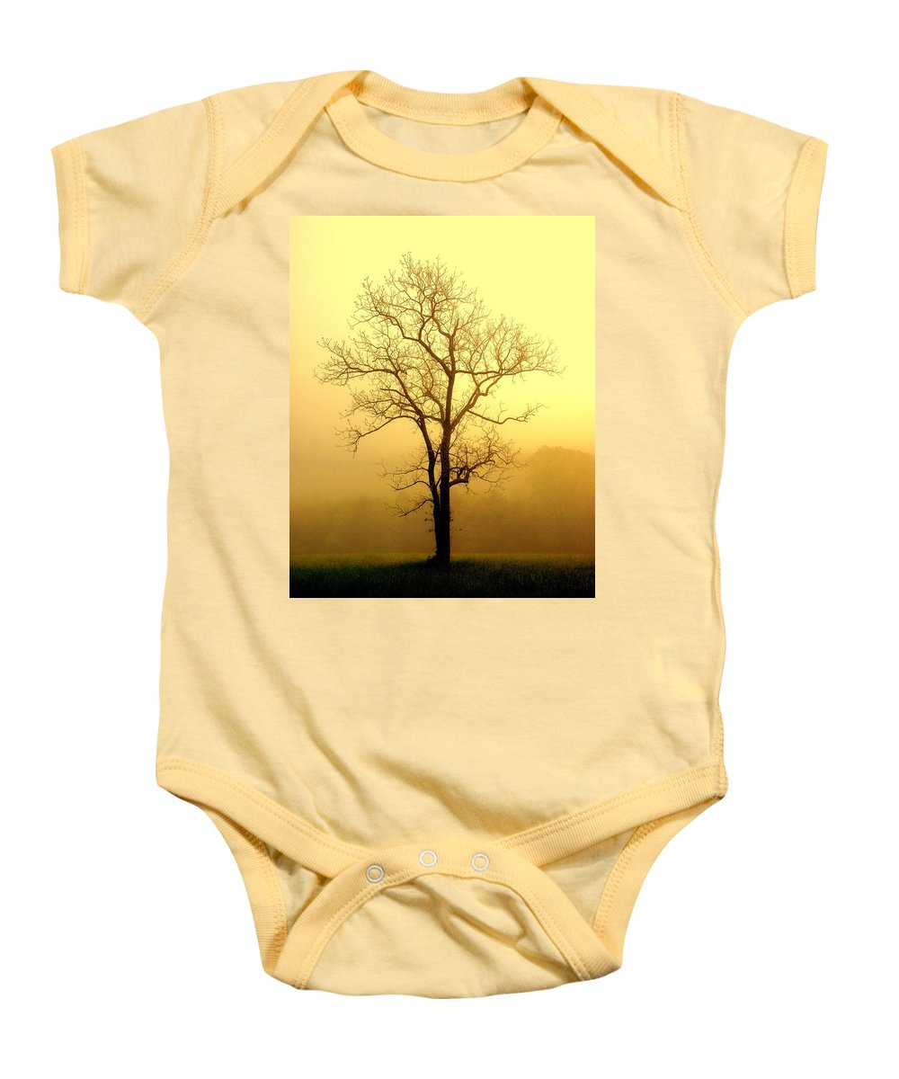 Tres Baby Onesie featuring the photograph Golden Haze by Marty Koch