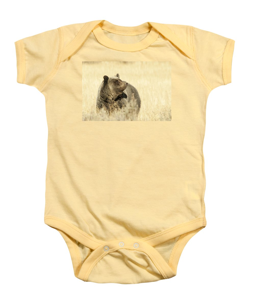 Grizzly Baby Onesie featuring the photograph Grizzly Bear by Gary Beeler