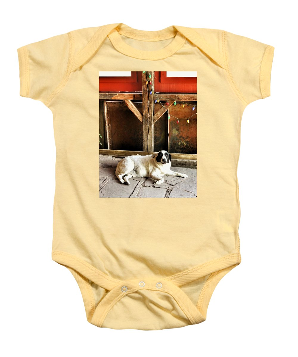 Madrid Baby Onesie featuring the photograph Guard Dog by Diana Rajala