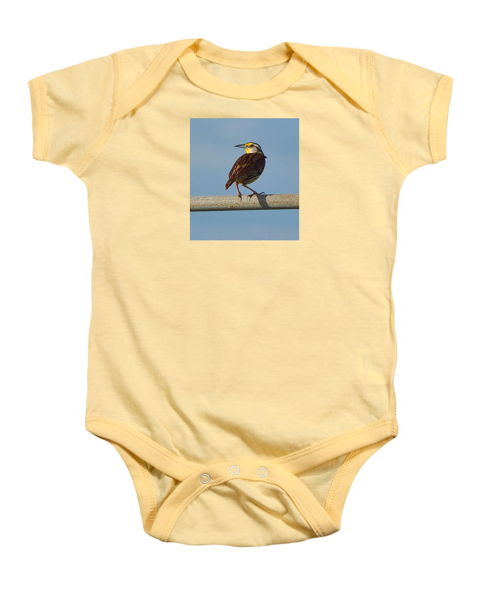 Meadowlark Baby Onesie featuring the photograph Lil Meadowlark by Amy Spear