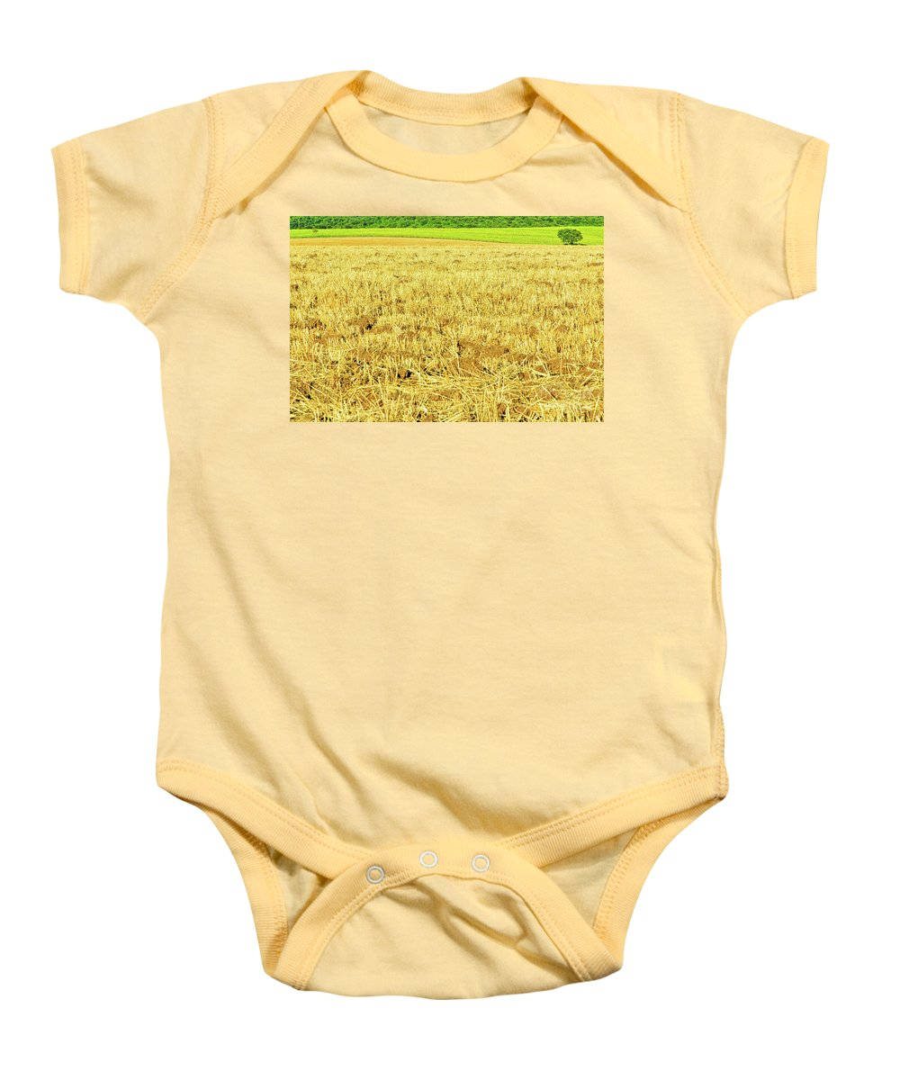 Countryside Baby Onesie featuring the photograph Lonely Tree And Stubble Filed by Silvia Ganora
