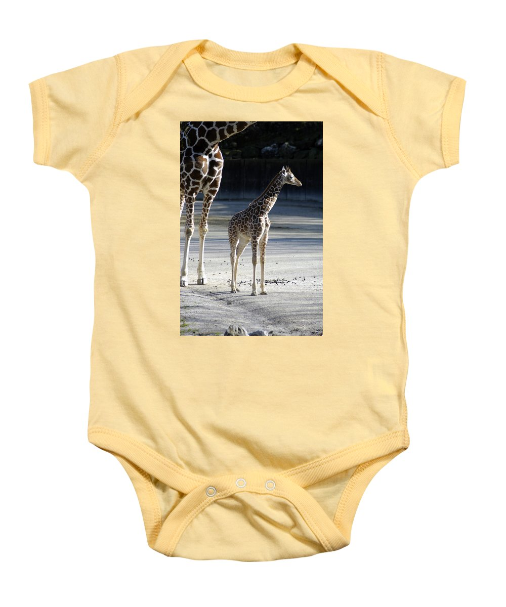 Long Legs Baby Onesie featuring the photograph Long Legs - Giraffe by D'Arcy Evans