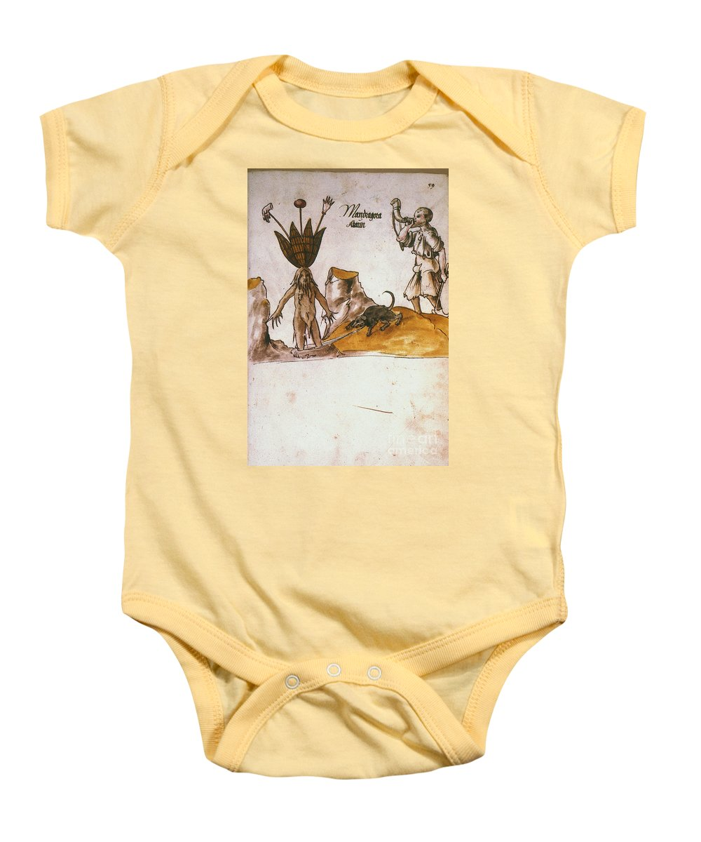 1500 Baby Onesie featuring the photograph Mandrake, C1500 by Granger