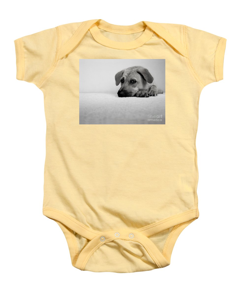 Animal Baby Onesie featuring the photograph My Girl by Dana DiPasquale