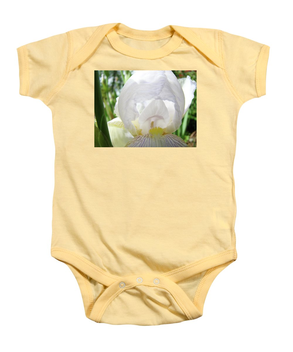 Iris Baby Onesie featuring the photograph Office Art Irises White Iris Flower Floral Giclee Prints Baslee Troutman by Baslee Troutman