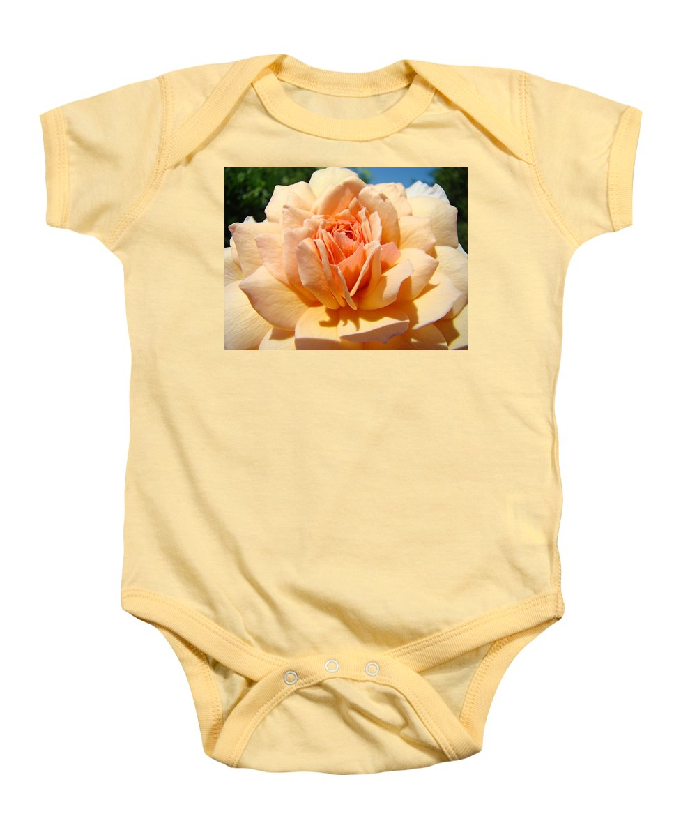 Rose Baby Onesie featuring the photograph Office Artwork Roses Peach Rose Flower Giclee Baslee Troutman by Baslee Troutman