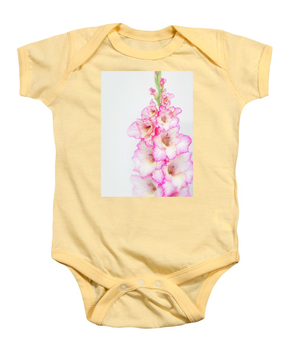 Gladiola Baby Onesie featuring the photograph Pink And White Gladiola by Susan Gary