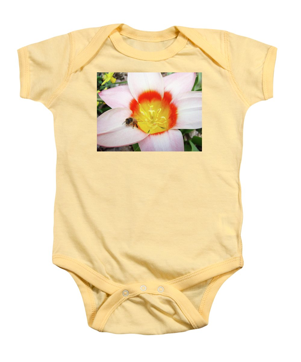 Tulip Baby Onesie featuring the photograph Pink Tulip Flower Orange Art Prints Honey Bee Baslee Troutman by Baslee Troutman