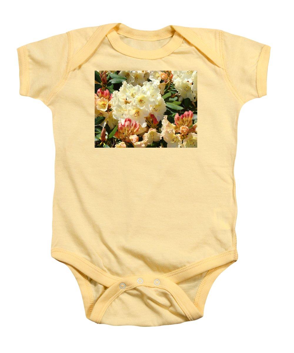�azaleas Artwork� Baby Onesie featuring the photograph Rhodies Creamy Yellow Orange 3 Rhododendrums Gardens Art Baslee Troutman by Baslee Troutman