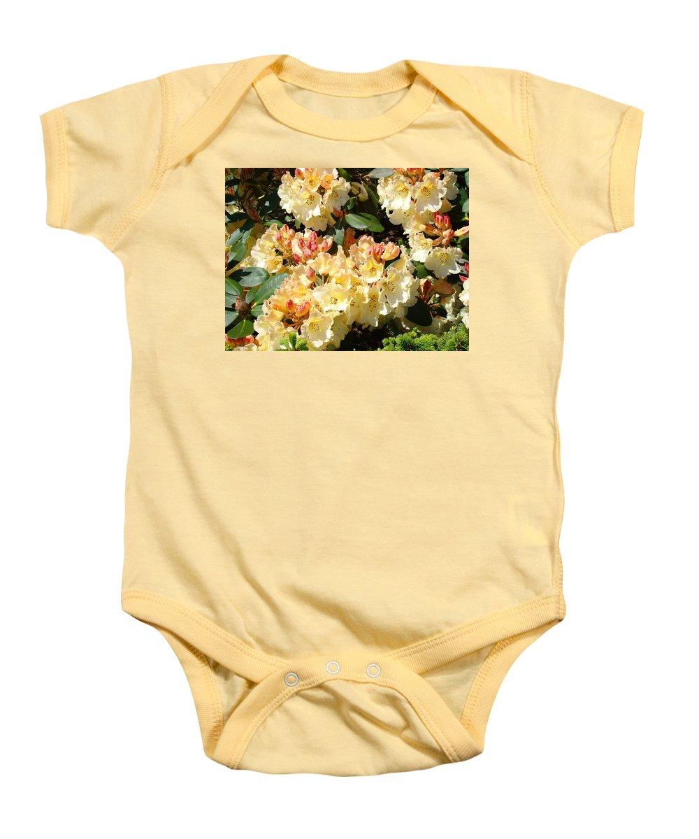 Rhodie Baby Onesie featuring the photograph Rhododendrons Garden Art Prints Creamy Yellow Orange Rhodies Baslee by Baslee Troutman