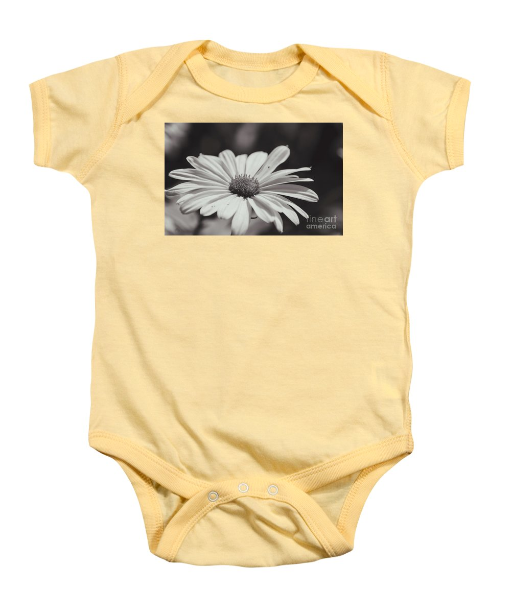Floral Baby Onesie featuring the photograph Single Daisy Bw by Andrea Anderegg