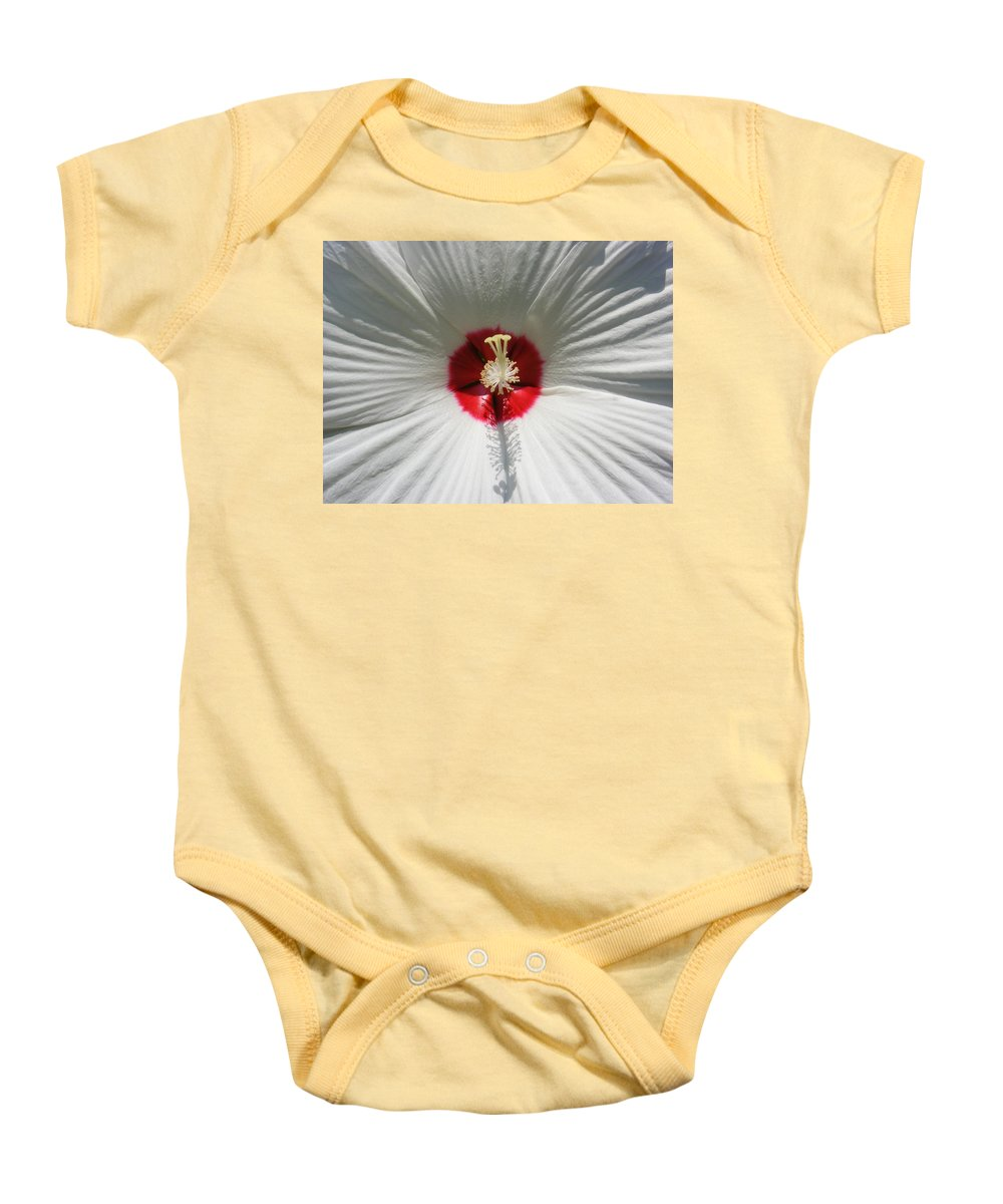 Soft Baby Onesie featuring the photograph Soft Cotton Sheets by Ed Smith