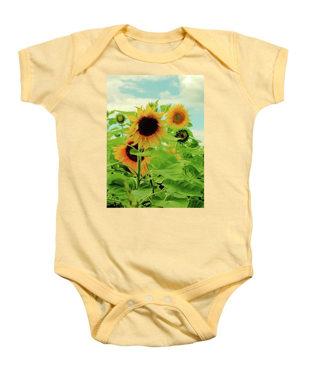 Beauty In Nature Baby Onesie featuring the photograph Sunflower Trio by Robert McCulloch