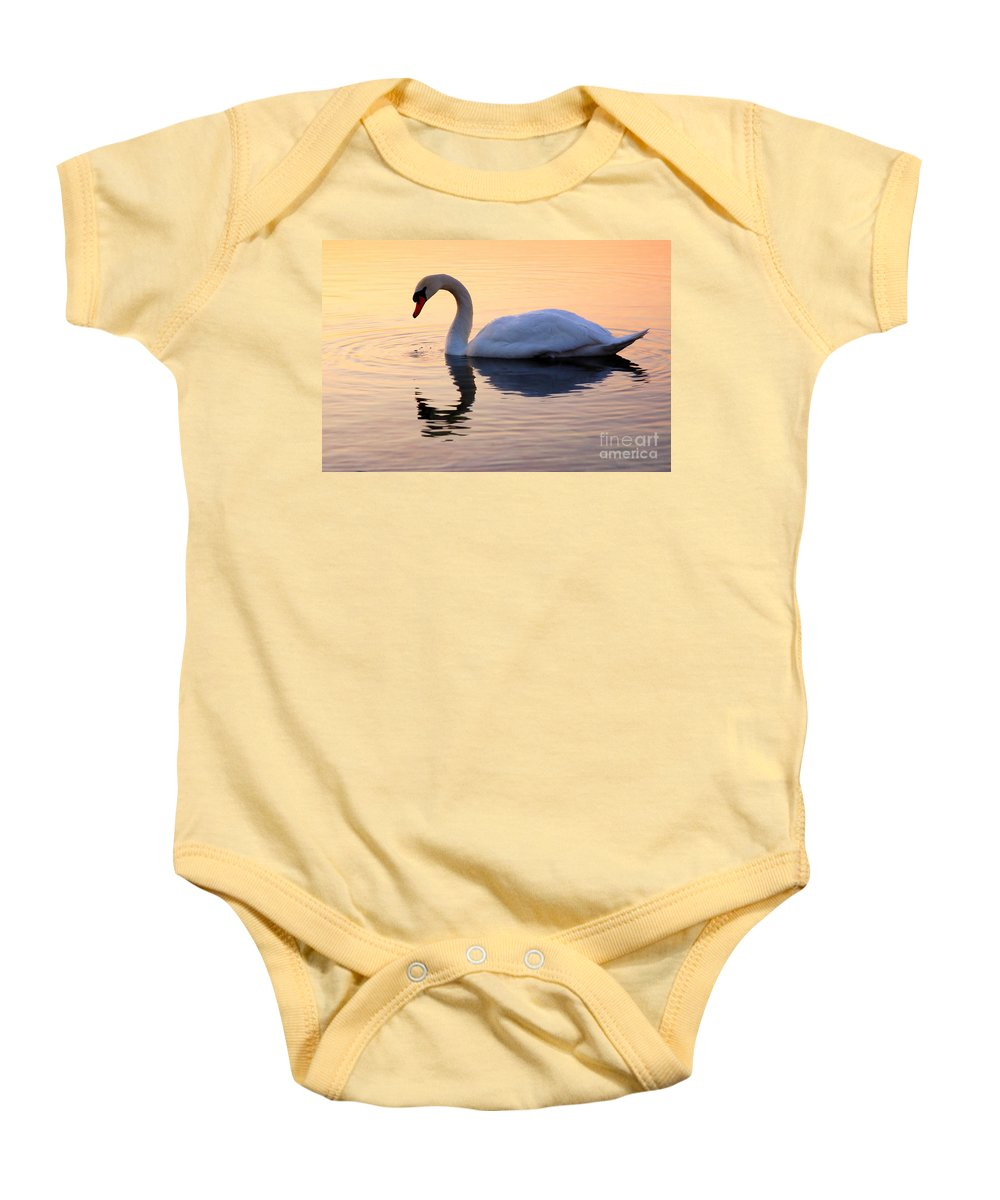 Avian Baby Onesie featuring the photograph Swan Lake by Joe Ng