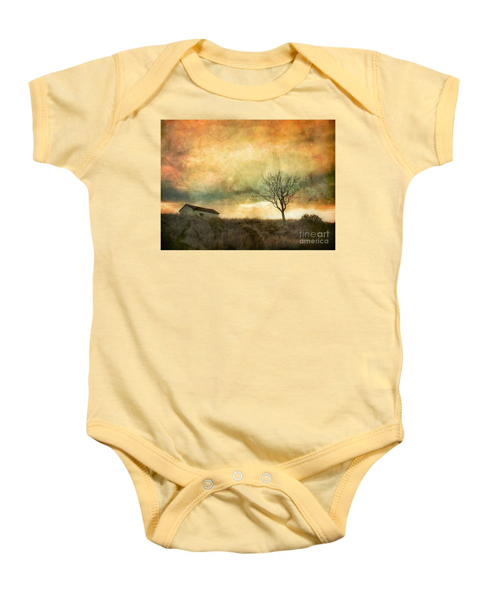 Tree Baby Onesie featuring the photograph The Tree And The Roof Top by Tara Turner