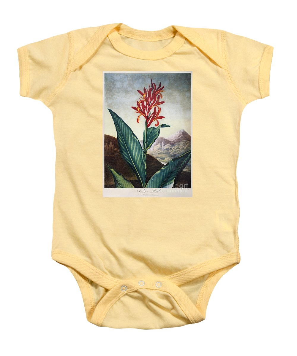 1804 Baby Onesie featuring the photograph Thornton: Indian Reed by Granger
