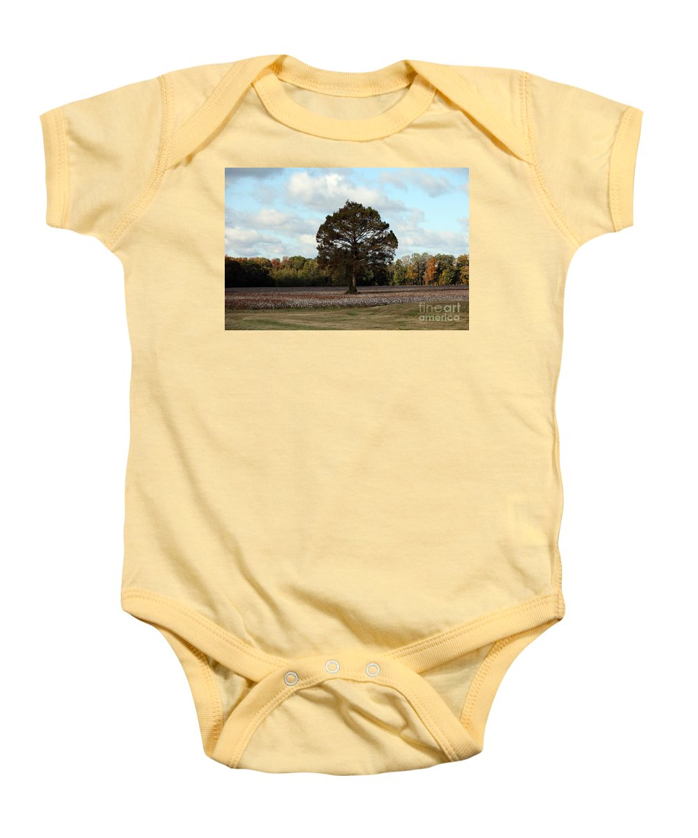 Tree Baby Onesie featuring the photograph Tree No Fog by Amanda Barcon