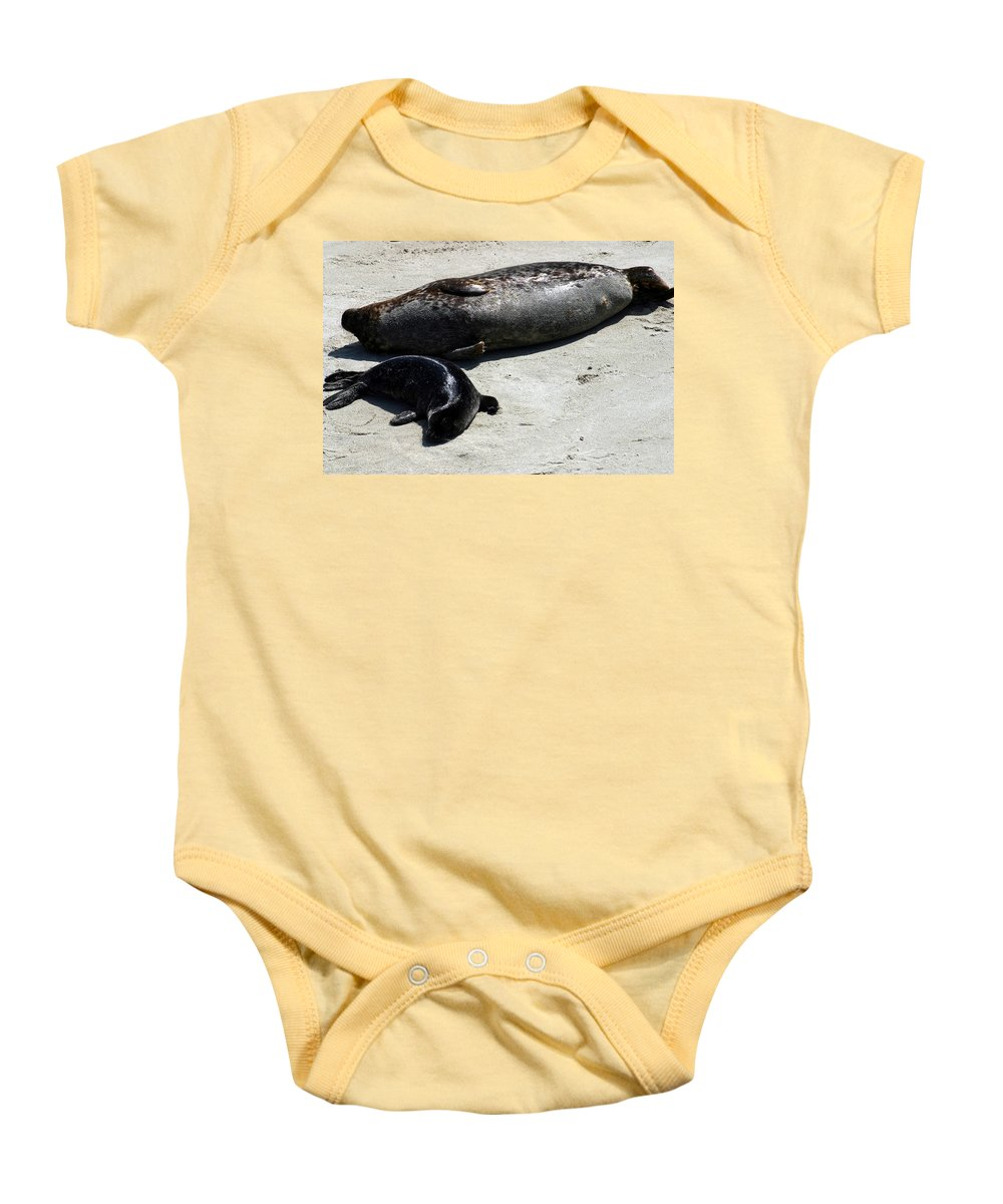 Seal Baby Onesie featuring the photograph Two Seals by Anthony Jones