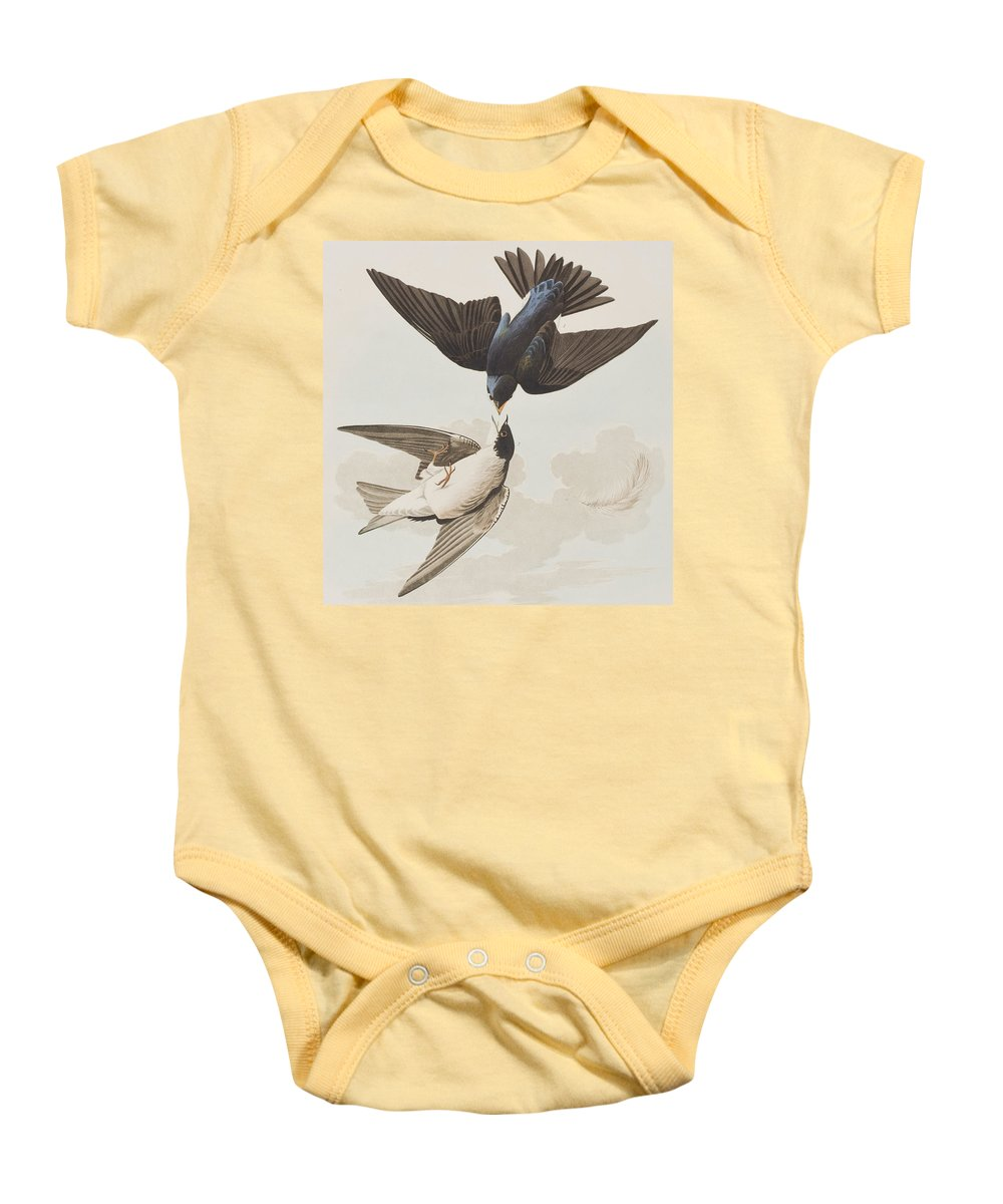 Swallow Baby Onesie featuring the painting White-bellied Swallow by John James Audubon