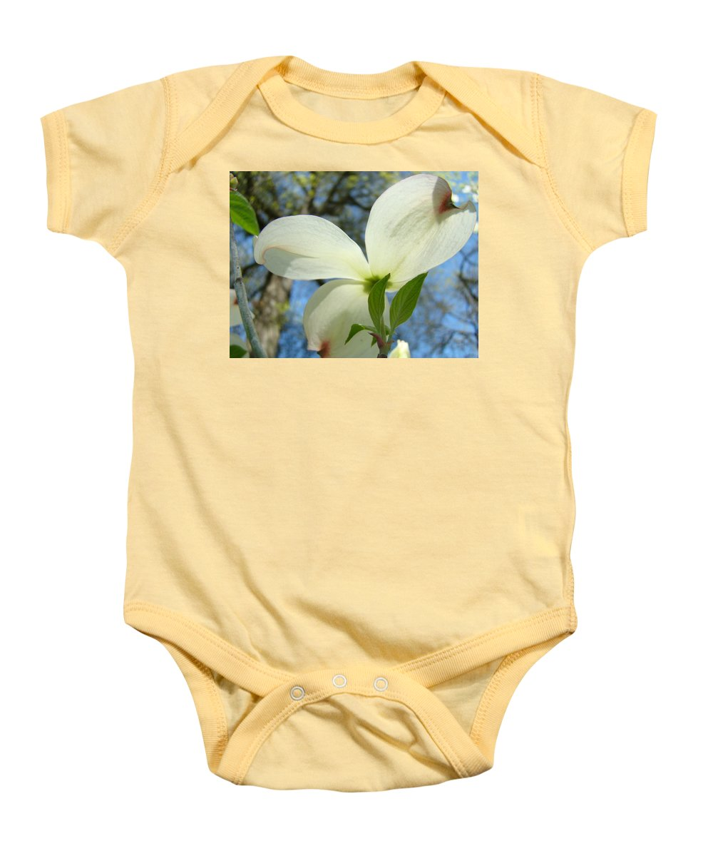 Giclee Art Print Baby Onesie featuring the photograph White Dogwood Flower Art Prints Blue Sky Baslee Troutman by Baslee Troutman