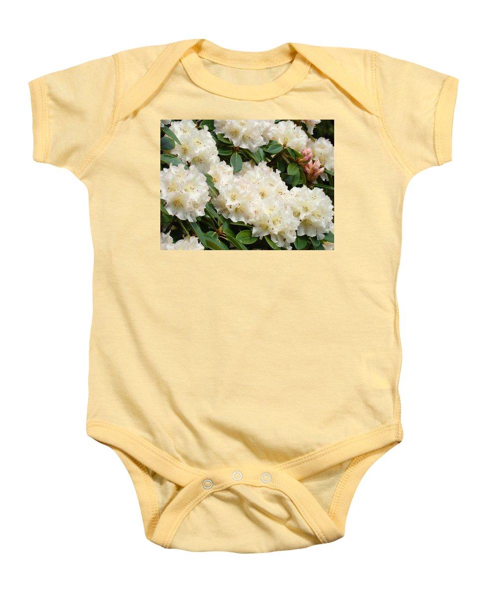 Rhodie Baby Onesie featuring the photograph White Rhodies Landscape Floral Art Prints Canvas Baslee Troutman by Baslee Troutman