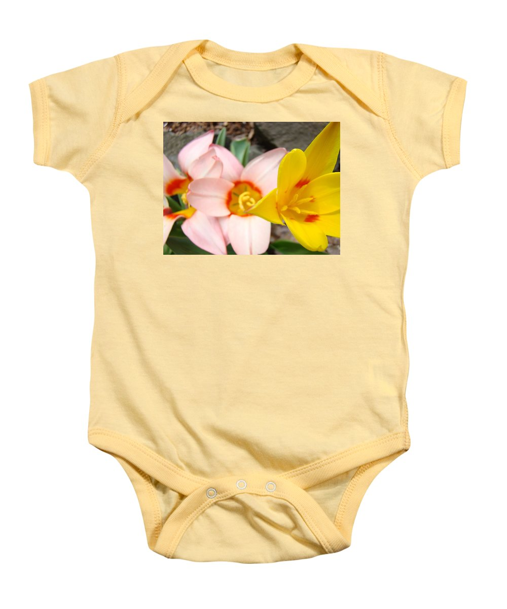 Tulip Baby Onesie featuring the photograph Yellow Tulips Art Prints Pink Tulips Spring Florals Baslee Troutman by Baslee Troutman