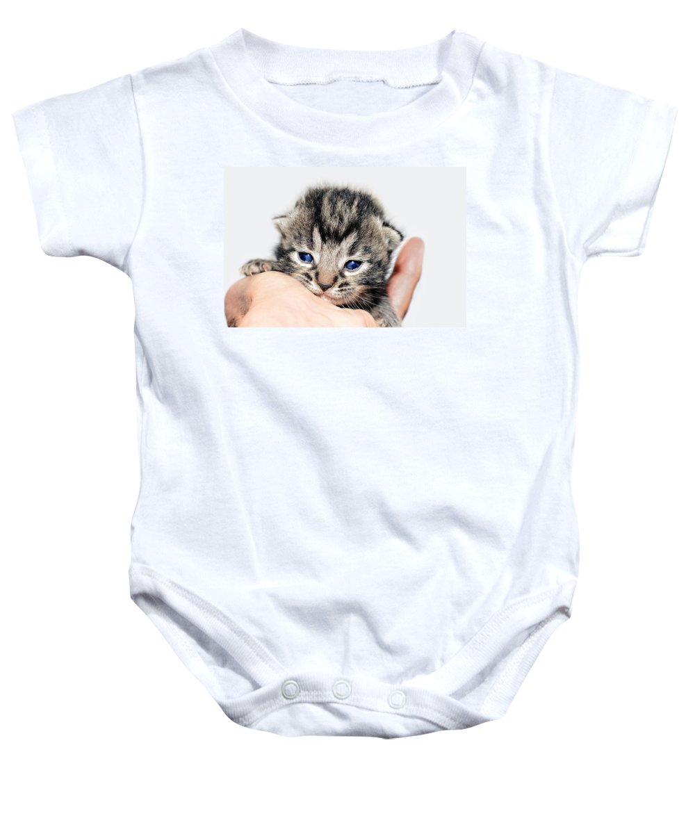 Cat Baby Onesie featuring the photograph Kitten In A Hand by Susan Leggett