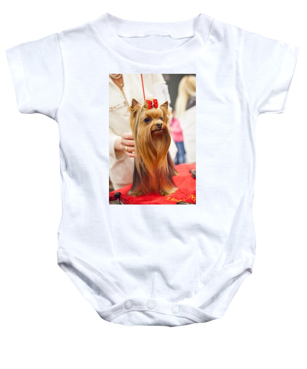 Dog Baby Onesie featuring the photograph Am I Beautiful? by Lance Pecchia