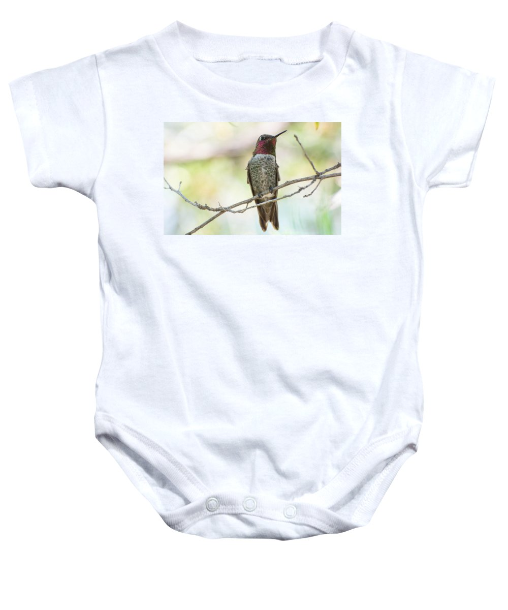 Hummingbird Baby Onesie featuring the photograph Ana Hummingbird by Michael Moriarty