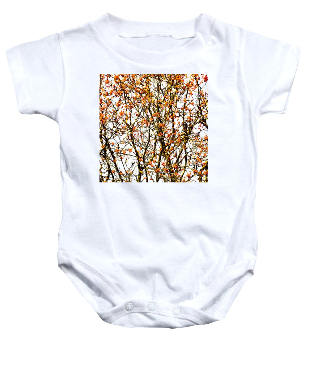 Abstract Baby Onesie featuring the photograph Beautiful Rowan 10 - Square by Alexander Senin