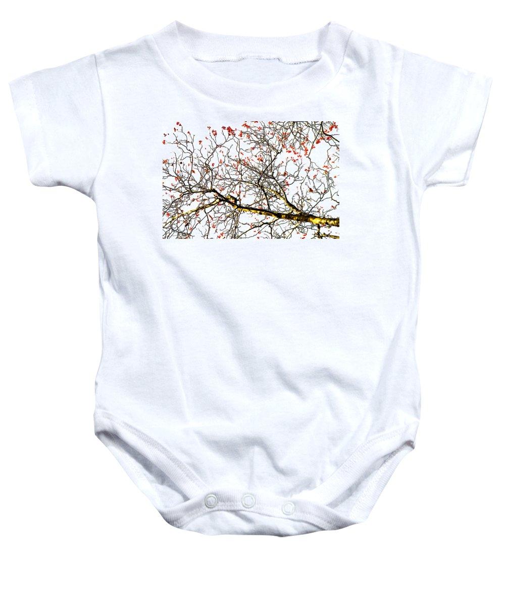 Abstract Baby Onesie featuring the photograph Beautiful Rowan 6 by Alexander Senin