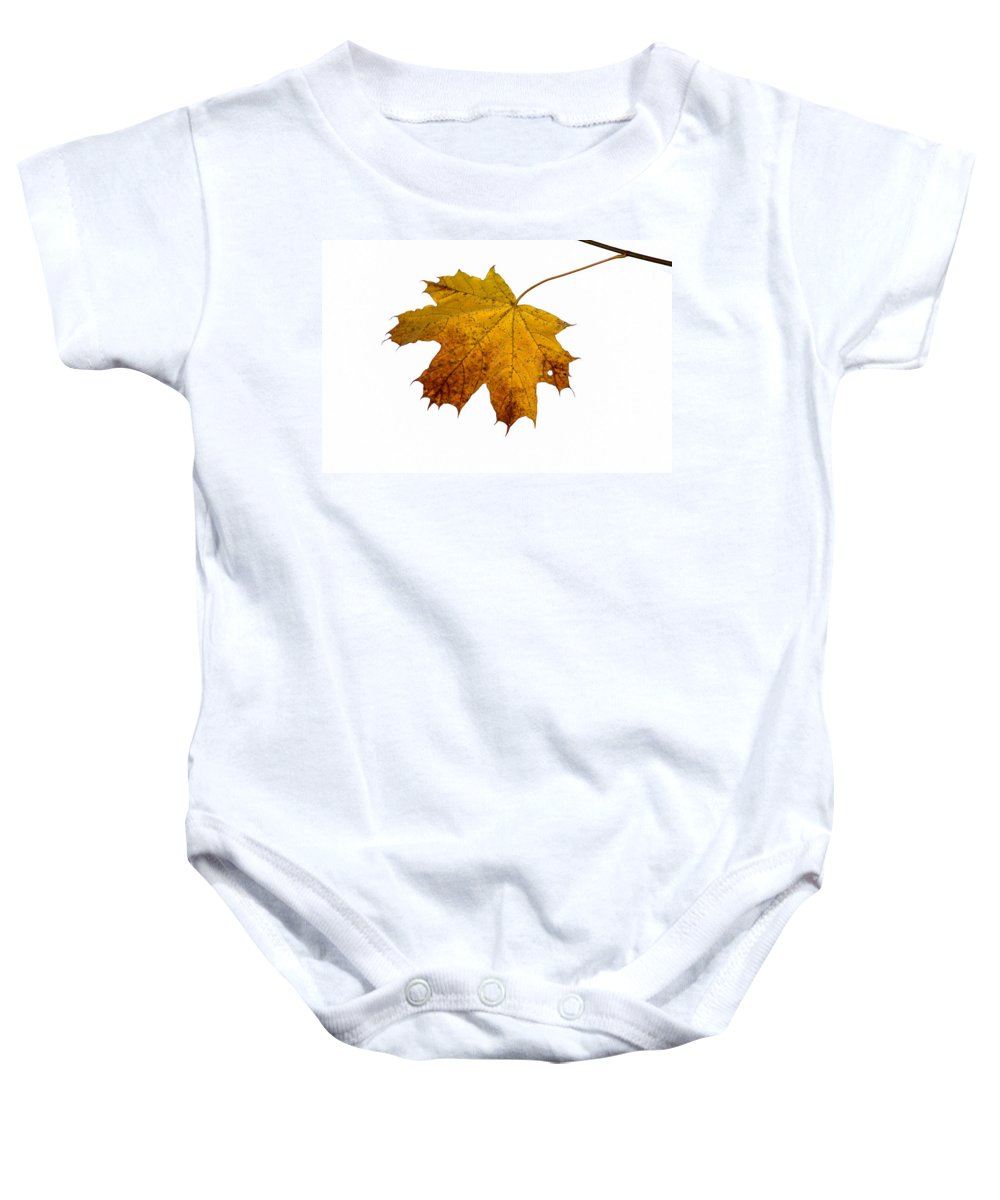 Abstract Baby Onesie featuring the photograph Claws Of The Autumn - Featured 3 by Alexander Senin