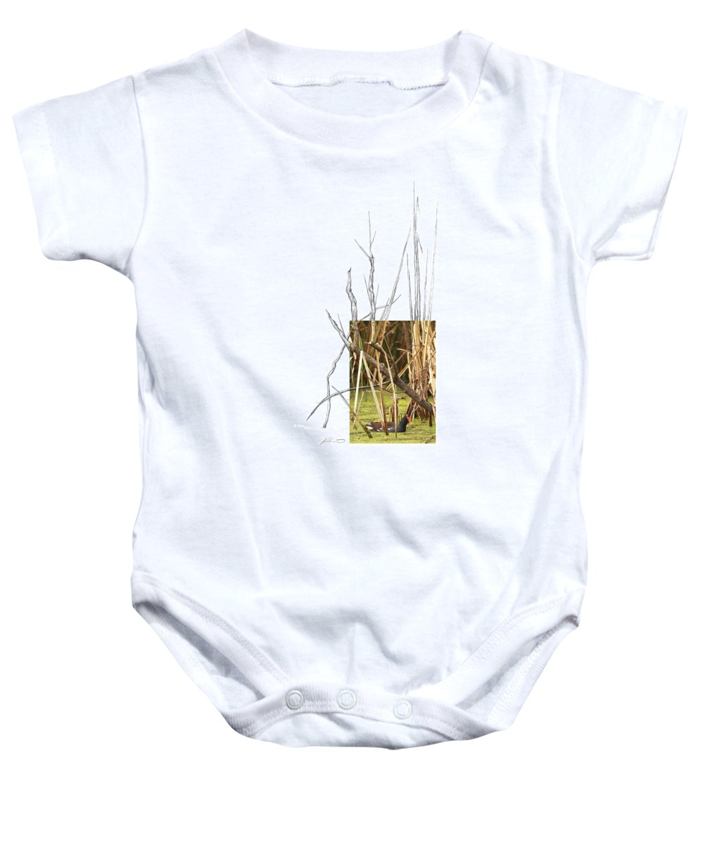 Common Moorhen Baby Onesie featuring the photograph Common Moorhen by Andrew McInnes