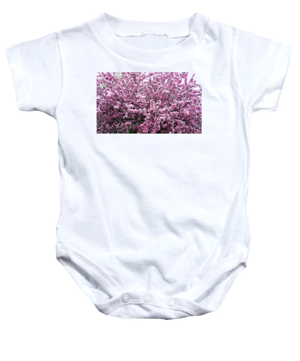 Crab Apple Tree Baby Onesie featuring the photograph Crab Apple Tree by Aimee L Maher ALM GALLERY