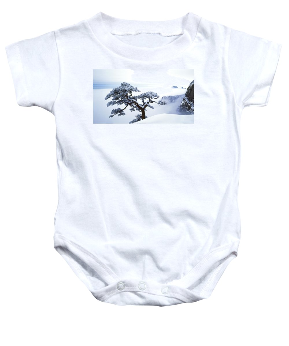 Bonsai Tree Baby Onesie featuring the photograph Fare-well Pine Tree by King Wu