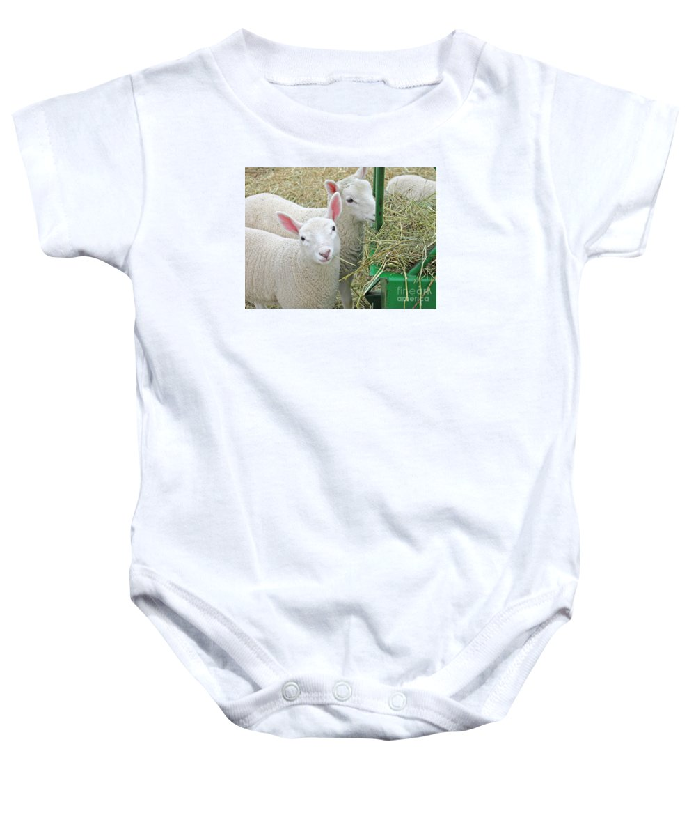 Lamb Baby Onesie featuring the photograph Innocence by Ann Horn