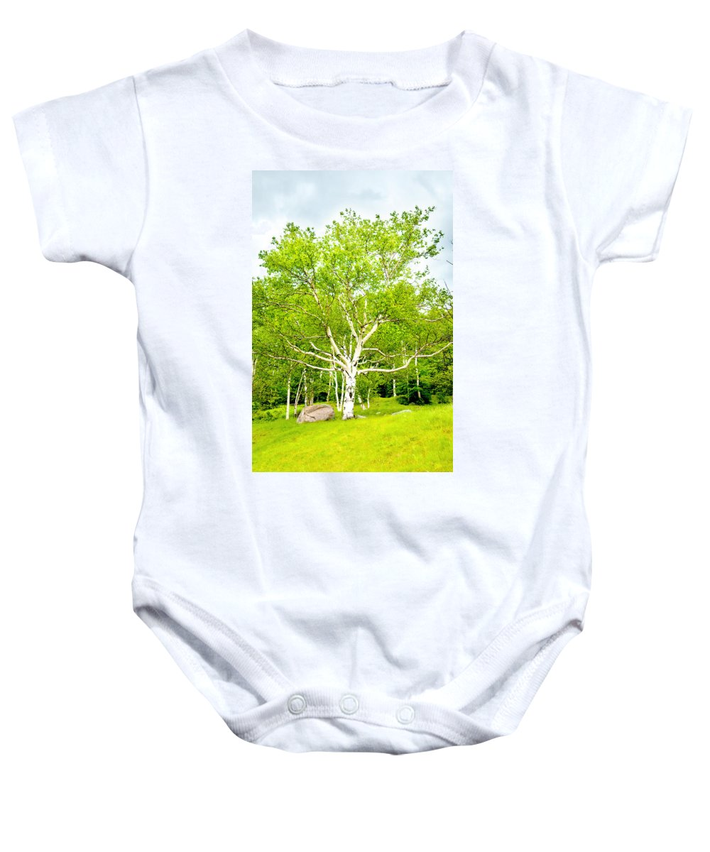 Crawford Notch Baby Onesie featuring the photograph King Of The Birch by Greg Fortier