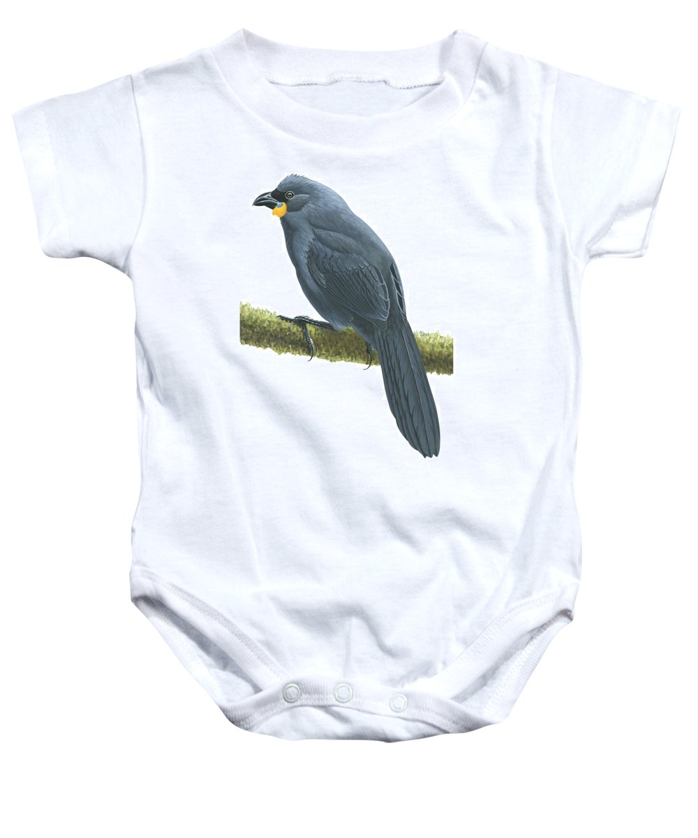 No People; Horizontal; Portrait; Side View; Full Length; White Background; One Animal; Animal Themes; Nature; Wildlife; Illustration And Painting; Branch; Kokako; Callaeas Cinereus; Black Baby Onesie featuring the drawing Kokako by Anonymous