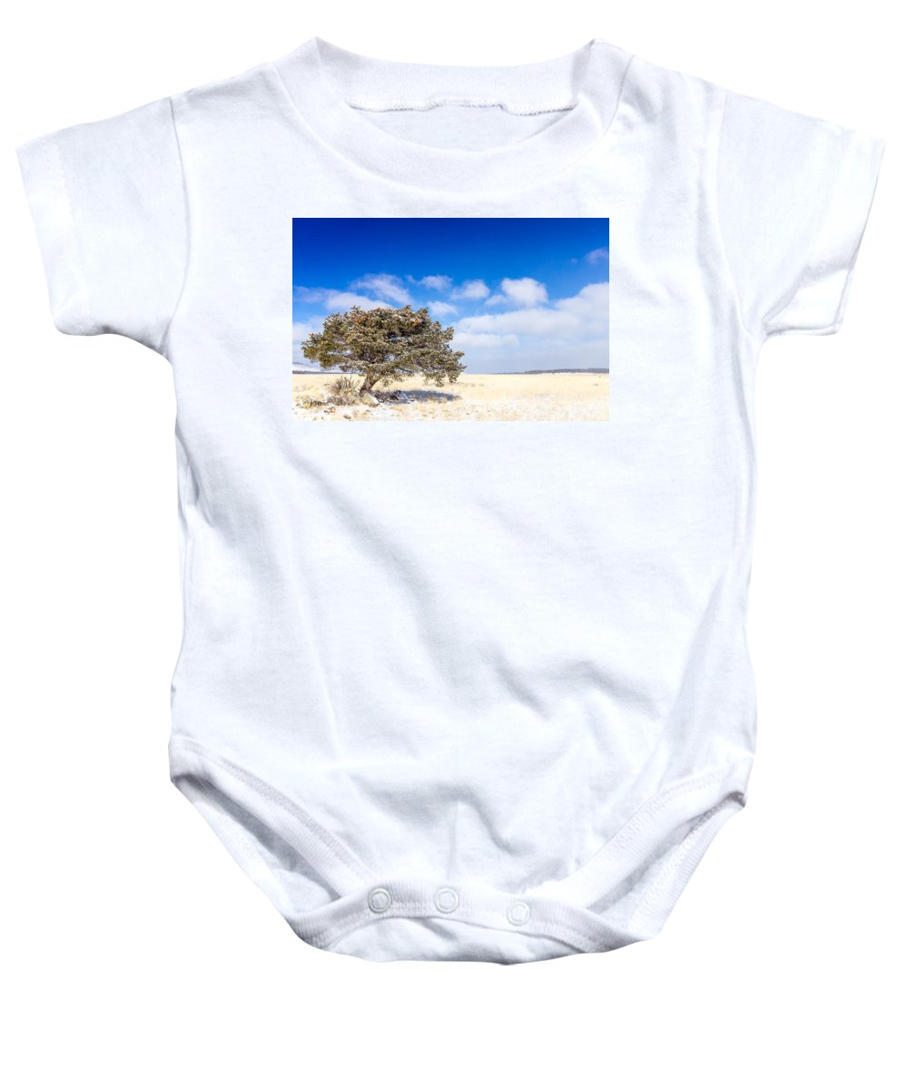 Tree Baby Onesie featuring the photograph Lone Tree by Jon Manjeot