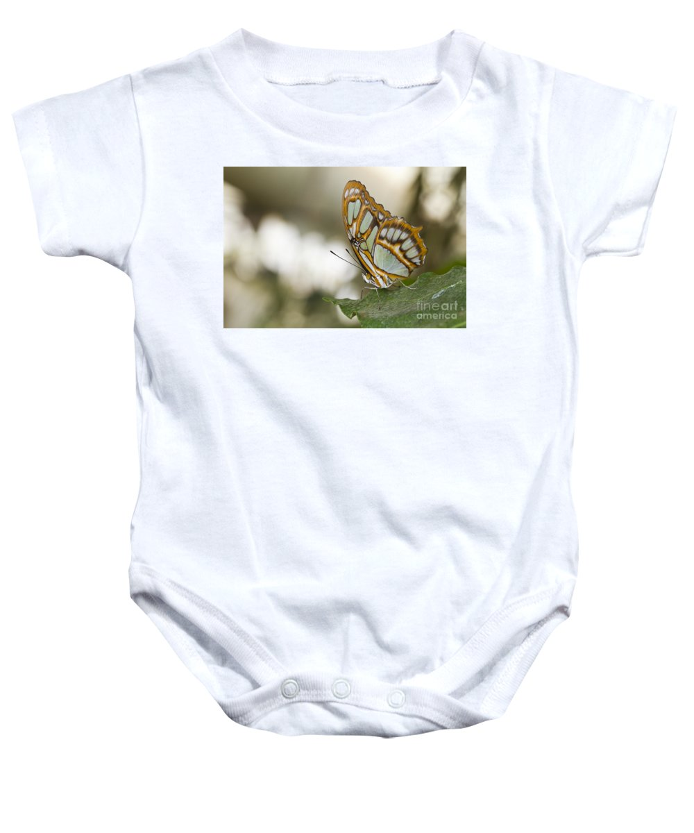 Malachite Baby Onesie featuring the photograph Malachite Butterfly by Bryan Keil